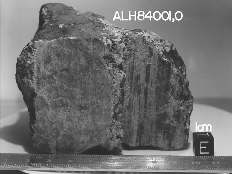 Метеорит ALH84001