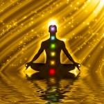 Принципы сохранения энергии в теле человека