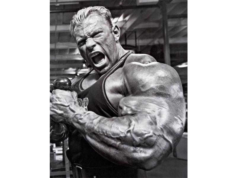 Непропорциональная выносливость в соотношении к мышечной массе