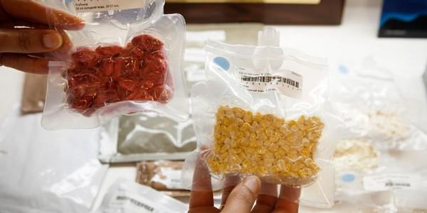 Продукты в вакуум-упаковке