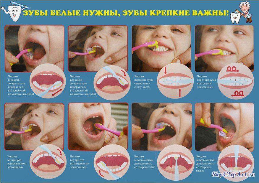Как правильно чистит зубы?