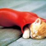 Решения различных проблем со сном
