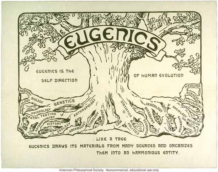 Евгеника является само направлением человеческой эволюции, как дерево евгеника рисует его материалы из многих источников и организует их в гармоничное целое