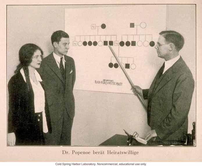 Обучение евгенике: Октябрь 1930 года, евгенист Паул Попеное
