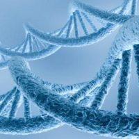 Лингвистико-волновая генетика