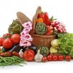 Сыроедение – особенности и варианты питания, советы для начинающих