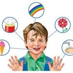 Пять основных чувств человека