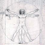 Строение человеческого организма