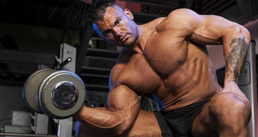 Накачиваем мышцы рук