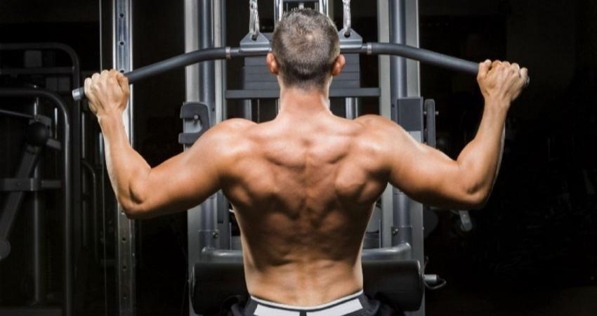 Накачиваем мышцы спины