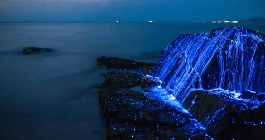 Побережья Окаямы (Япония)
