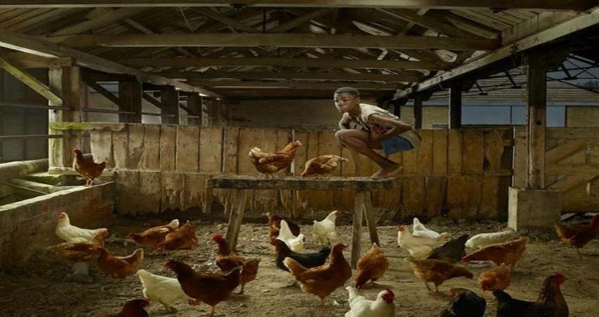 Суджит Кумар - мальчик с повадками курицы
