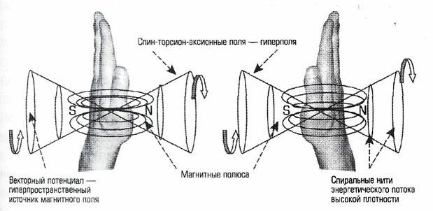 Человеческие руки генерируют спин – торсион - аксионных полей