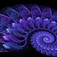 Фракталы в природе, искусстве и математике
