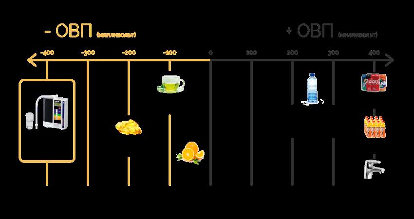 Все процессы в человеческом организме сводятся к биохимическим реакциям в водном растворе — обмену веществ.